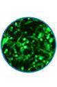 biomolecular-thumb